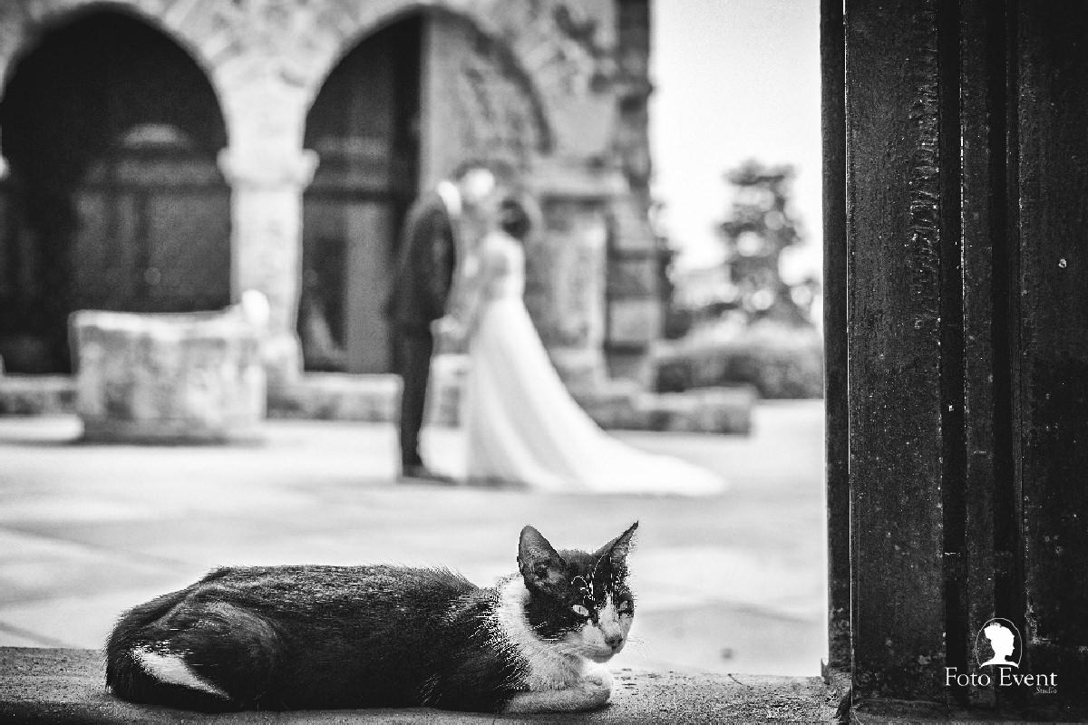 2017-05-06 Matrimonio Romina e Angelo Costanza 5DE 973_CD